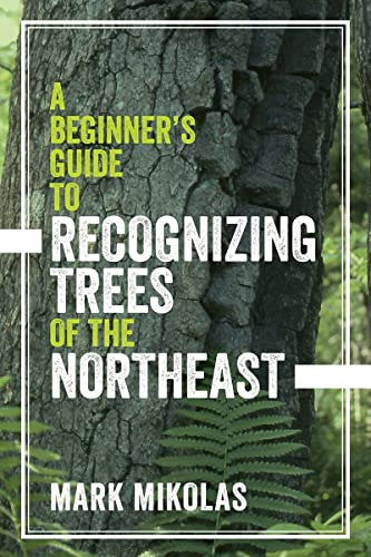 a-beginners-guide-to-recognizing-trees-of-the-northeast
