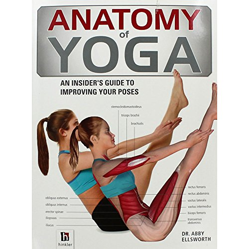 anatomy-of-yoga