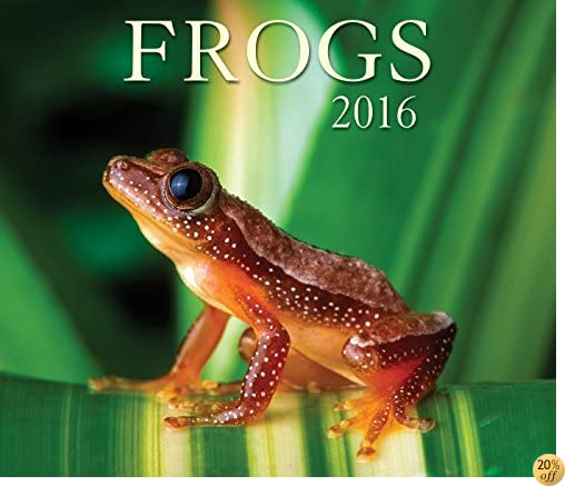 TFrogs 2016