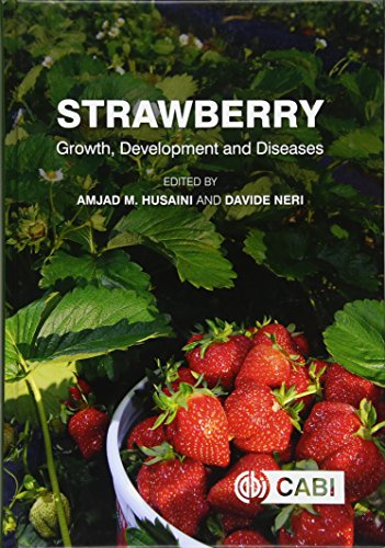 strawberry-growth-development-and-diseases