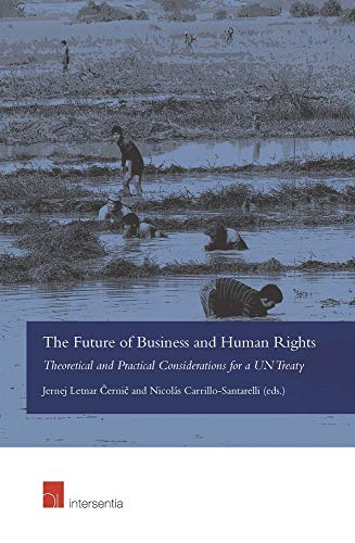 the-future-of-business-and-human-rights-theore