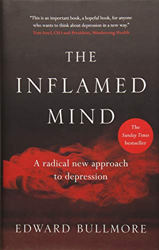 the-inflamed-mind-a-radical-new-approach-to-depression