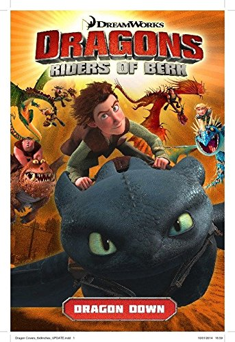dragons-riders-of-berk-volume-1-dragon-down-how-to-train-your-dragon-tv
