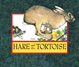 Ward, Helen: The Hare and the Tortoise