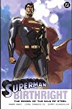 Waid, Mark: Superman: Birthright