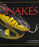 Badger, David P.: Snakes