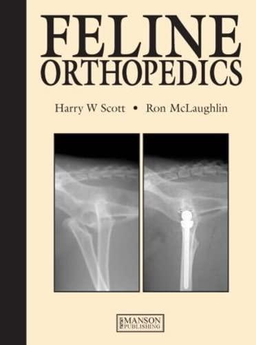 feline-orthopedics