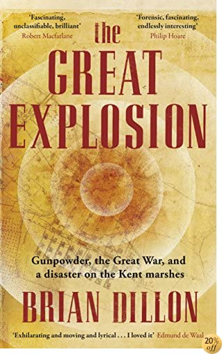 The Great Explosion: Gunpowder The Great War And The Anatomy Of Disaster