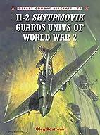 Il-2 Shturmovik Guards Units of World War 2…