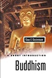 Klostermaier, Klaus K.: Buddhism: A Short Introduction