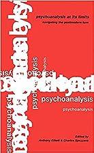 Psychoanalysis at its limits : navigating…