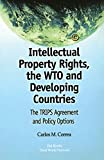 Correa, Carlos M.: Intellectual Property Rights, the Wto and Developing Countries: The Trips Agreement and Policy Options