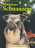 Newman, Peter: Miniature Schnauzers Today (Book of the Breed)