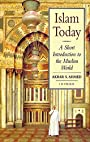 Islam Today: A Short Introduction to the Muslim World - Akbar S. Ahmed