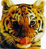 Funfax: Cats (Funfax Animal Shaped Board Books)