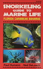 Snorkeling Guide to Marine Life: Florida…
