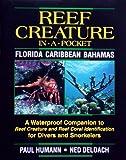 Paul Humann: Reef Creature in-a-pocket Caribbean