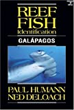 Humann, Paul: Reef Fish Identification: Galapagos