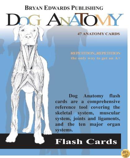 TDog Anatomy