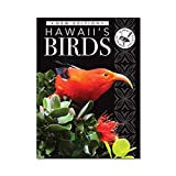 Hawaii Audubon Society: Hawaii's Birds