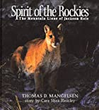 Spirit of the rockies : the mountain lions…