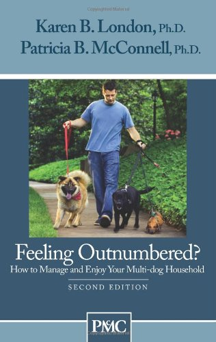 feeling-outnumbered-how-to-manage-and-enjoy-your-multi-dog-household