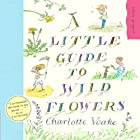 A Little Guide to Wild Flowers by Charlotte…