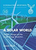 Elliot, David: A Solar World: Schumacher Briefing No.10: Climate Change and the Green Energy Revolution (Schumacher Briefings)