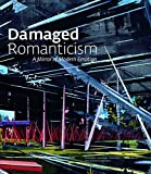Terrie Sultan: Damaged Romanticism: A Mirror of Modern Emotion