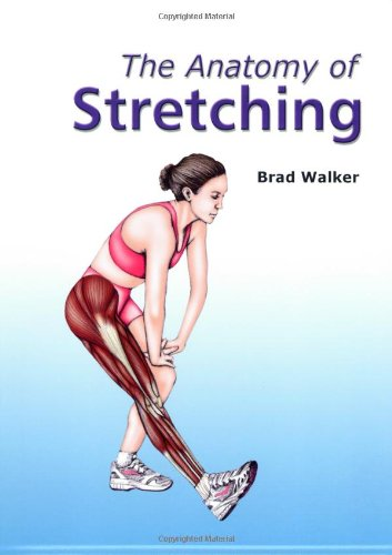 the-anatomy-of-stretching