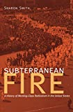 Smith, Sharon: Subterranean Fire: A History of Working-class Radicalism in the United States