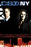Collins, Max Allan: CSI:NY: Bloody Murder