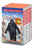 Montgomery, R. A.: Choose Your Own Adventure: The Abominable Snowman/Journey Under the Sea/Space and Beyond /The Lost Jewels of Nabooti/Mystery of the Maya/House of Danger