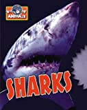 Somerville, Louisa: Sharks (World of Animals)