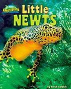 Little Newts (Amphibiana) by Meish Goldish