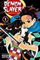 Acheter Demon Slayer: Kimetsu no Yaiba volume 1 sur Amazon