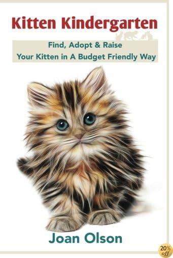 Kitten Kindergarten: Find, Adopt & Raise Your Kitten in A Budget Friendly Way