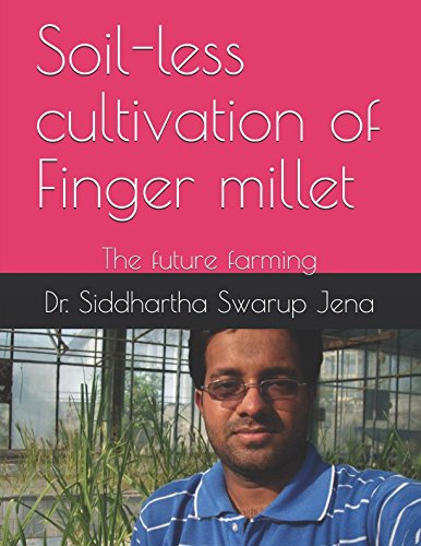 soil-less-cultivation-of-finger-millet-the-future-farming-agriculture