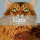Cats by Claude Pacheteau