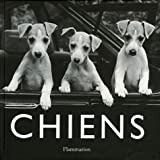 Jean-Claude Suares: Chiens (French Edition)