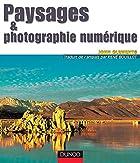 A Comprehensive Guide to Digital Landscape…
