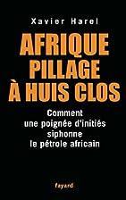 Afrique, pillage à huis clos :…