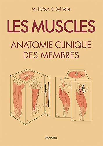 les-muscles-anatomie-clinique-des-membres-french-edition