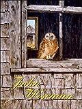 John Wiseman: John Wiseman (French Edition)