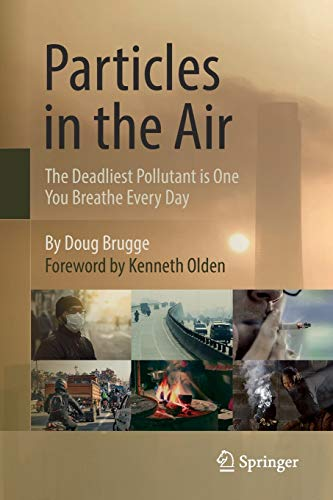 particles-in-the-air-the-deadliest-pollutant-is-one-you-breathe-every-day
