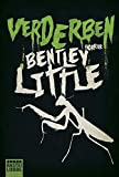 Bentley Little: Verderben