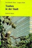 Tauben in der Stadt by Lars-Henrik Olsen