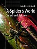 Barth, Friedrich G.: A Spider's World: Senses and Behavior