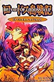 Ryo Mizuno: Record of Lodoss War. Die Chroniken von Flaim 06. Carlsen Comics
