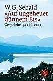 Sebald, W G: Auf Ungeheuer Dunnen Eis Gesprache (German Edition)
